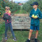5 visites agrotouristiques à faire en famille cet automne